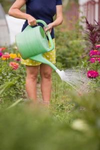 Gefälligkeitshandlungen wie Blumengießen – Eintritt der privaten Haftpflichtversicherung