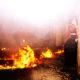 Feuerversicherung - grob Fahrlässige Herbeiführung eines Brandes - Saunaofen