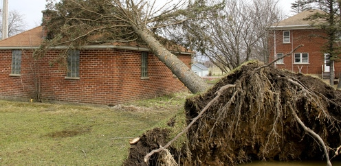 Schturmschäden am Haus durch Baum