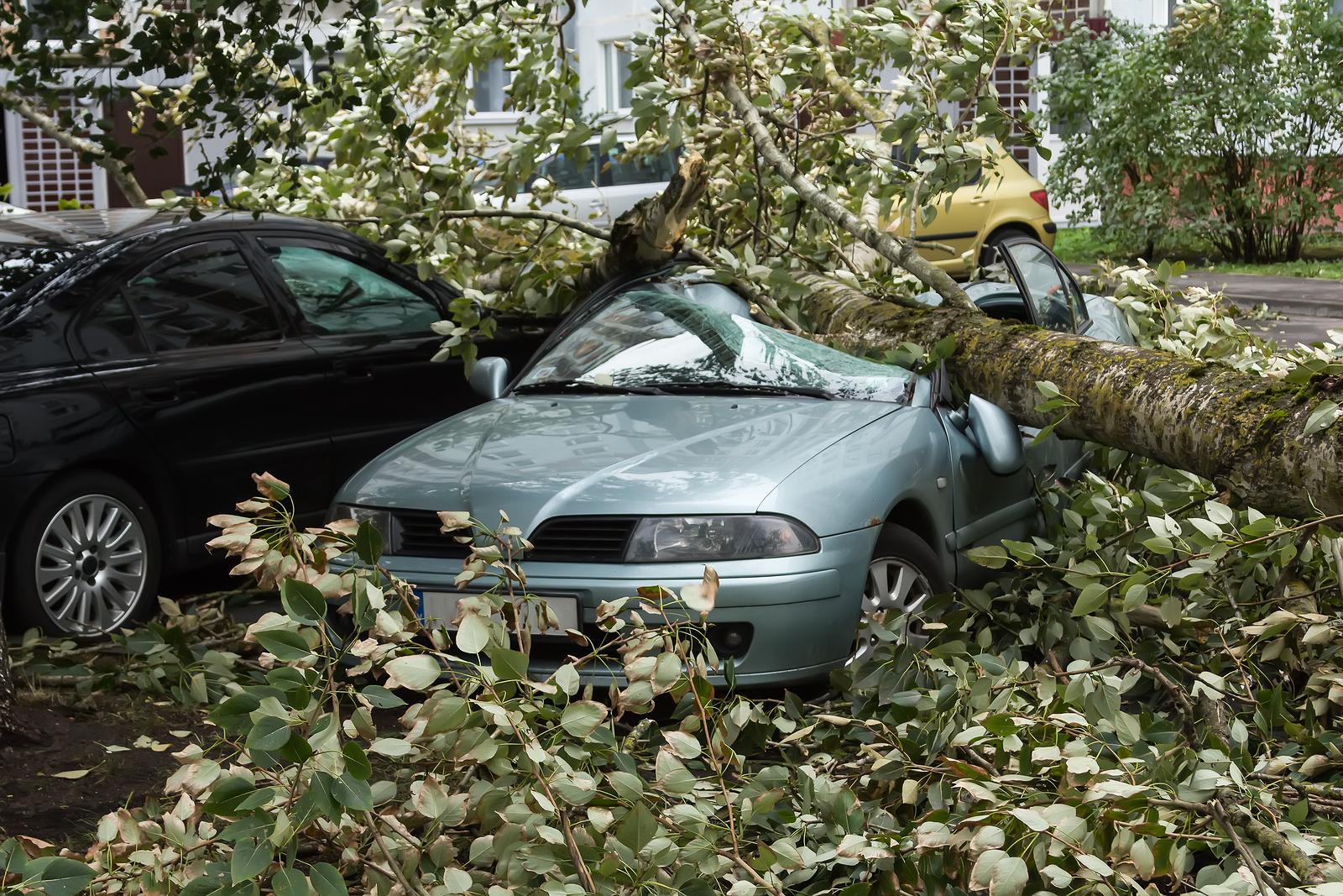 Sturmschäden an KFZ - Wer zahlt den Schaden?