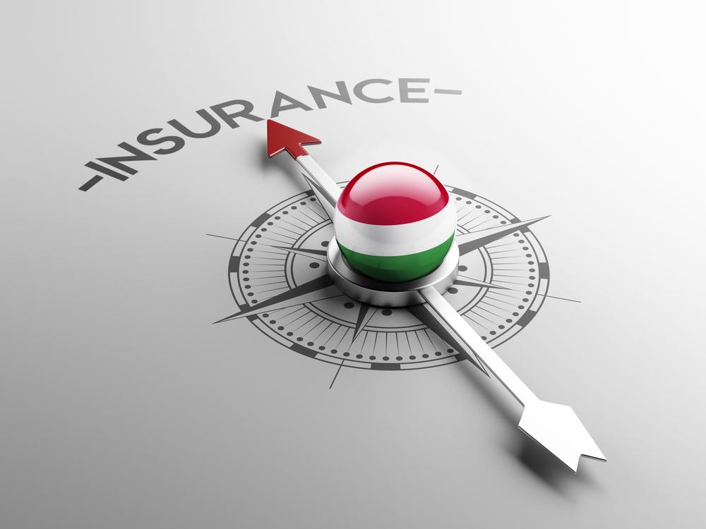 Ungarische Hausversicherung - Klage wegen Leitungswasserschadens