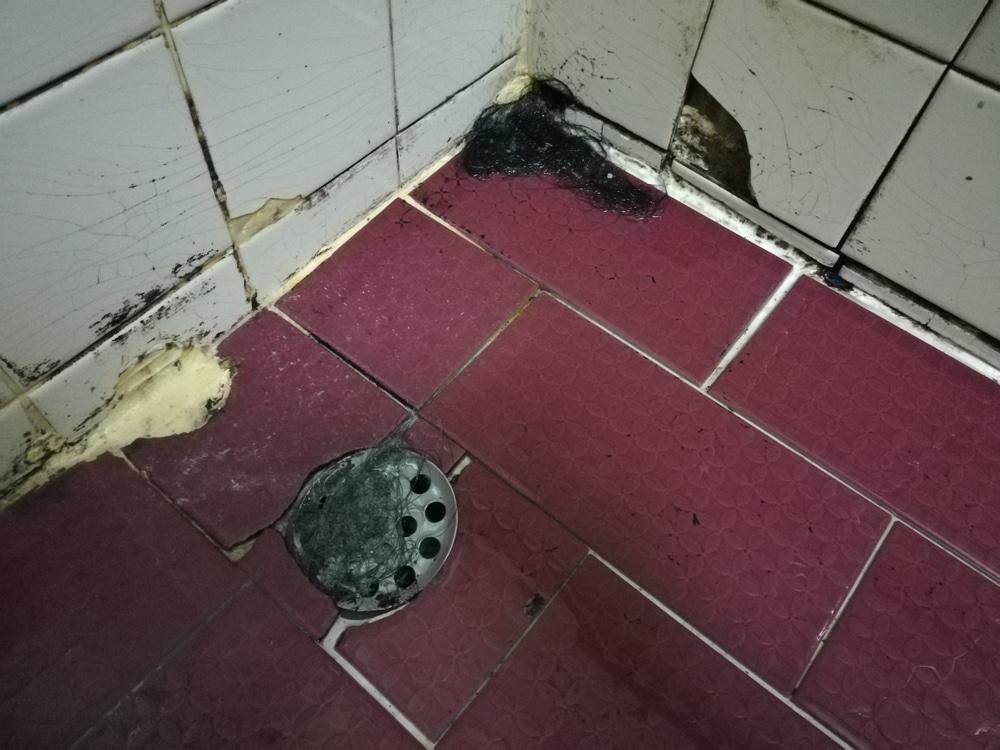 Wohngebäudeversicherung - bestimmungswidriger Wasseraustritt in einer Duschecke