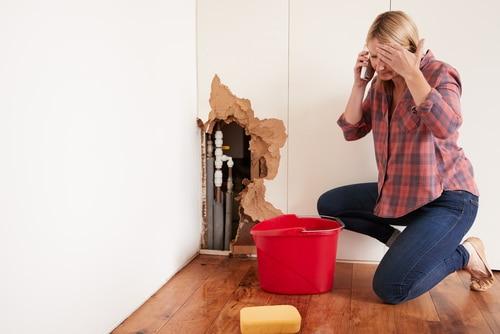 Wohngebäudeversicherung für Eigentumswohnanlage - Deckungsprozess nach Wasserrohrbruch