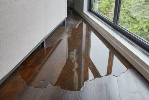 Wohngebäudeversicherung – Leitungswasserschaden - Risikoausschluss für Schwammschäden